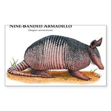 Nine-Banded Armadillo Rectangle Decal