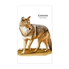 Coyote Rectangle Decal