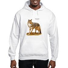 Coyote Hoodie