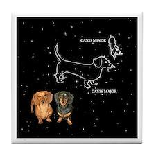 Canis Major Tile Coaster