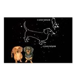 Canis Major Postcards (Package of 8)