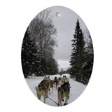Dog sledding Oval Ornaments