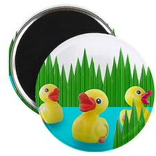 Ducks in Sushi Grass Magnet