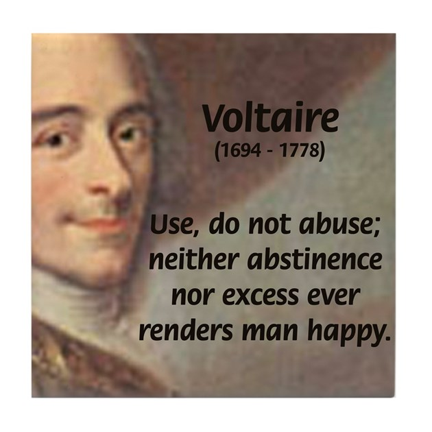 Essay voltaire and the enlightenment