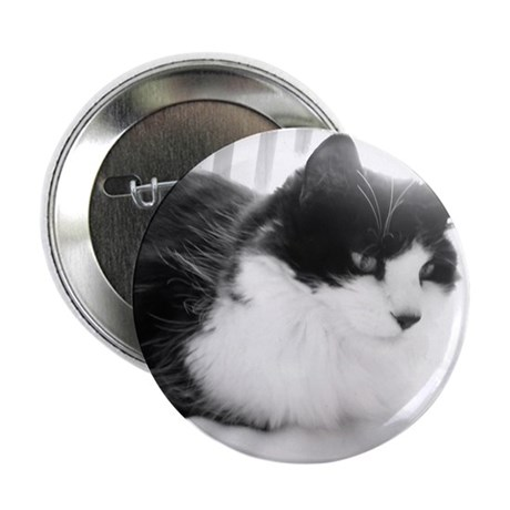 "Black and White Longhaired Cat 2.25"" Button"