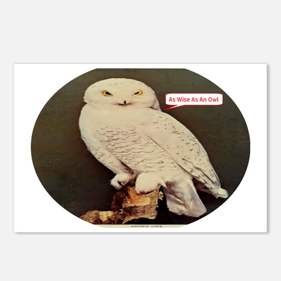 Drawing of an Owl Postcards (Package of 8)