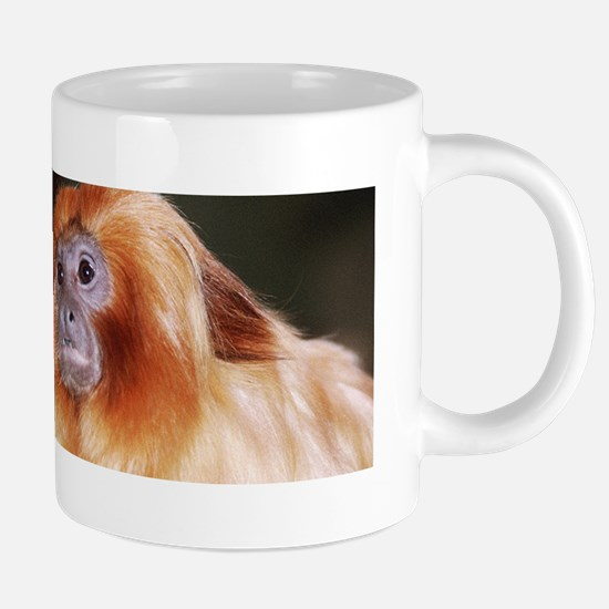 golden lion tamarin-zoo 20 oz Ceramic Mega Mug