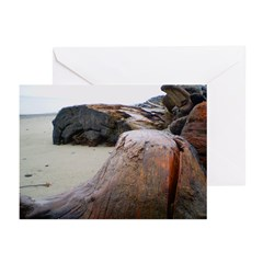 Rain Scape Greeting Cards (Pk of 10)