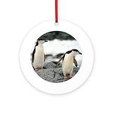Antarctica penguin Round Ornaments