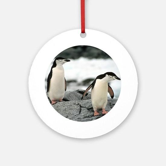 Chinstrap Penguin Keepsake (Round) Ornament