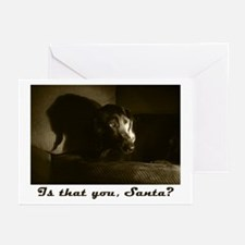 Is that you, Santa? Greeting Cards (Pk of 10)
