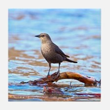 Cool T bird Tile Coaster