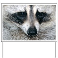 Raccoon Yard Sign