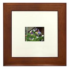Pansies Framed Tile