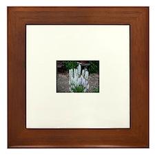 Hyacinth Framed Tile