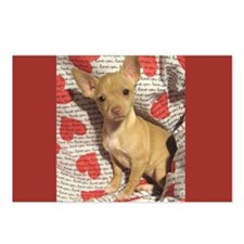 Chihuahua Love Postcards (Package of 8)