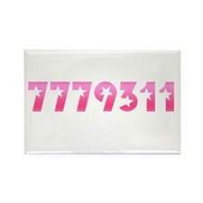 7779311 Rectangle Magnet