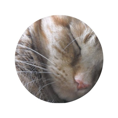 "Orange Tabby Big Vinnie 3.5"" Button (100 pack)"