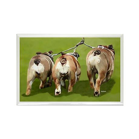 Bull Dogs Butts Rectangle Magnet