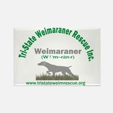 Weimar-What? Rectangle Magnet (10 pack)