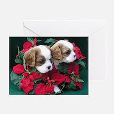 Xmas Cards (Pk of 10)-Christmas Cavalier Duo