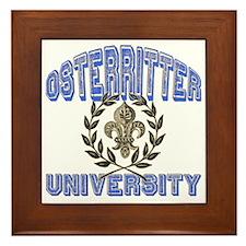 Osterritter Last Name University Framed Tile