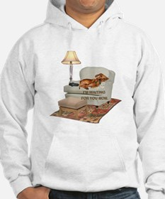 TV Doxie Jumper Hoody