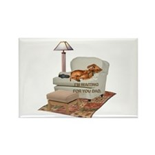 TV Doxie Dad Rectangle Magnet