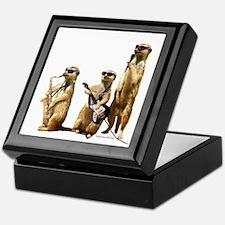 Meerkat Trio2 Keepsake Box