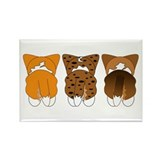Corgi tricolor magnet Magnets
