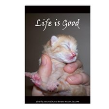 Life is Good Kitten Postcards (Package of 8)