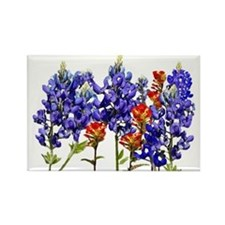 BLUEBONNETS AND PAINTBRUSH Rectangle Magnet