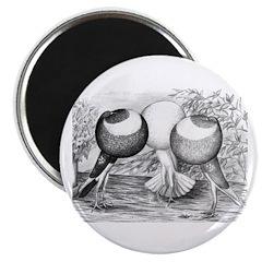 "Norwich Cropper Pigeons 2.25"" Magnet (100 pack)"