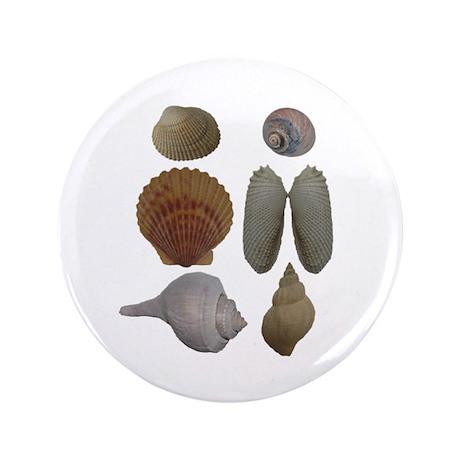 """Sea Shells Logo 3.5"""" Button"""