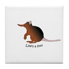 Giant Elephant Shrew Tile Coaster