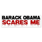 Anti Obama Bumper Sticker (10 pk)
