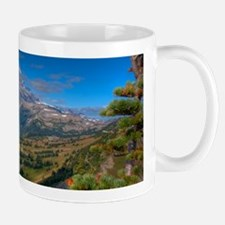 _MG_8036-Mug Mugs