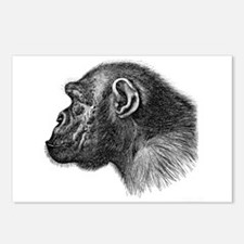 Ape Head Postcards (Package of 8)