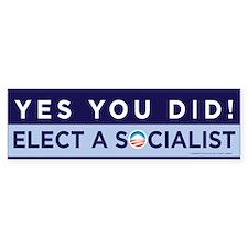 Yes You Did! Bumper Bumper Bumper Sticker