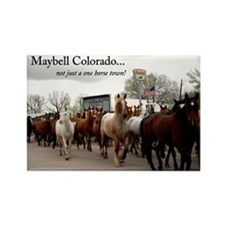 HORSE ROUNDUP Rectangle Magnet (10 pack)