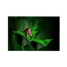 Leaf Fairy Rectangle Magnet