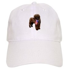 Brown PWD with Flag Baseball Cap