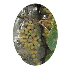 Tu B'shvat Summer Grape Vine Oval Ornament