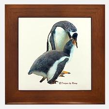 Gentoo Penguin Framed Tile