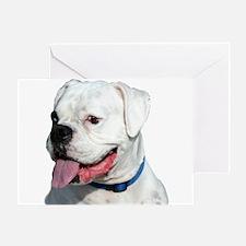 White Boxer Greeting Card