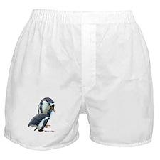Gentoo Penguin  Boxer Shorts