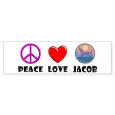 Peace Love Jacob Bumper Bumper Sticker