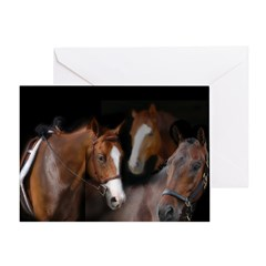 Horses Of The World Greeting Card