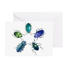 Five Shiny Beetles Greeting Cards (Pk of 20)