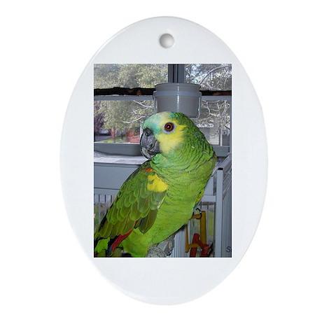 Parrot Design Oval Ornament